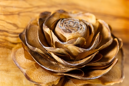 Pine Cone on the wooden background photo