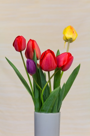 Vase with red tulips on a countertop  photo