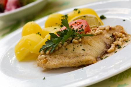 roasted pike perch fillet with boiled potatoes  photo