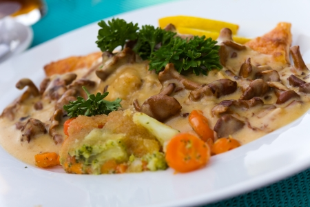 cantharellus cibarius: Gourmet Ragout of Fish  Dore  with Cream Sauce and chanterelle  Cantharellus cibarius  Stock Photo