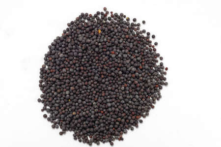 Black Mustard seeds - isolated on white