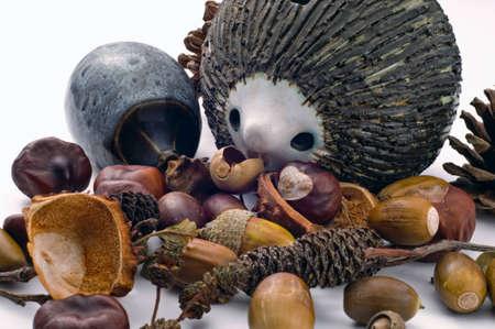 Twee pot egels op een witte achtergrond met een selectie van noten