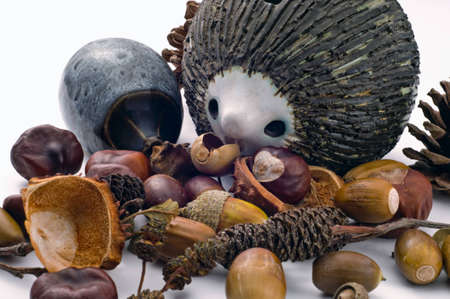 Two pot hedgehogs on white background with selection of nuts Stock Photo