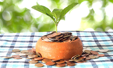 asian coins: Coins in pottery bowl and out of around bowl are placed on a Silk loincloth floor. And the tree is top growing with green and white bokeh background for business concept image.