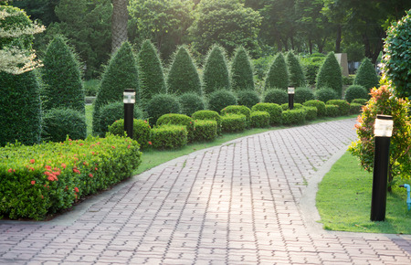 walk path: Many tree and Stone pathway into garden in the evening time.