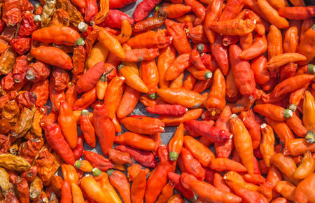Pile of many Red chili peppers background.The chili pepper is the fruit of plants from the genus Capsicum, members of the nightshade family, Solanaceae.