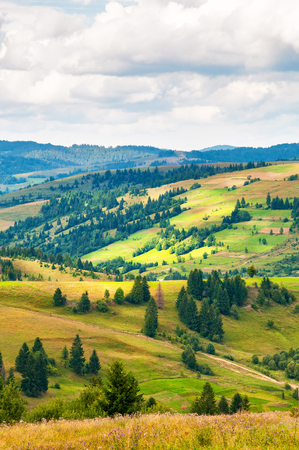 Carpathian mountain landscape with blue cloudy sky in summer day Stock Photo