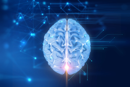 3d rendering of human  brain on technology background  represent artificial intelligence and cyber  space concept Stock Photo