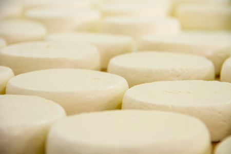 factory: Cheese factory Stock Photo