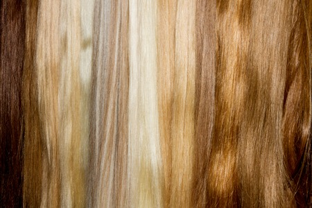 chignon: Row  of brown false hair. Woman chignon. Stock Photo