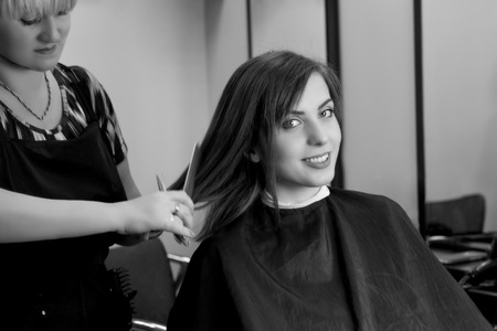 hair cutting: Hair cutting process. Hair dressing. Beauty salon. Girl in hair salon