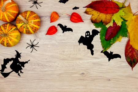 terrifying: Elements of halloween decoration. Orange pumpkins, ghost, spiders, bats, witch and autumn leaves isolated on wooden background