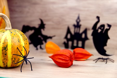 terrifying: Spooky silhouette of spider, witch, spirit and pumpkin on wooden background Stock Photo