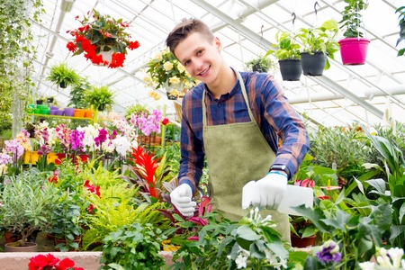airbrush: Guy standing in the greenhouse surrounded by colorful plants and sprinkling flowers with airbrush
