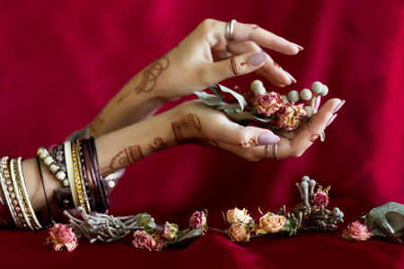 Slender elegant female wrists painted with traditional Indian oriental mehndi ornaments by henna. Hands dressed in bracelets and rings hold dry roses flowers. Vinous fabric with folds on background.