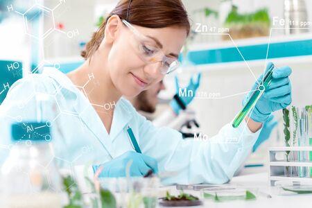 Wissenschaftler arbeiten im mikrobiologischen Labor. Frau schreibt Ergebnisse von Experimenten mit Pflanzen ins Notizbuch. Biotechnologe erforscht Flüssigkeit im Reagenzglas. Biologe Arbeitsplatzkonzept. Standard-Bild