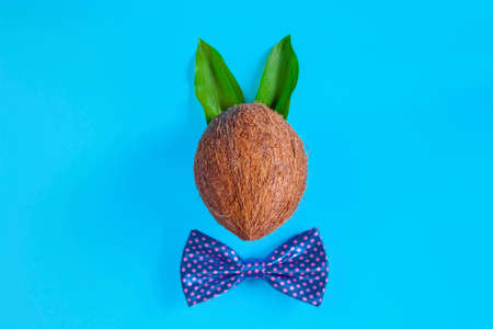 Brown coconut nut decorated with bunny ears of green leaves and purple bow tie is in center of blue background. Decorative rabbit for celebrating holiday. Happy easter and spring concept. Zdjęcie Seryjne