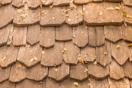 cedar shakes: Detail of protective wooden shingle on the roof