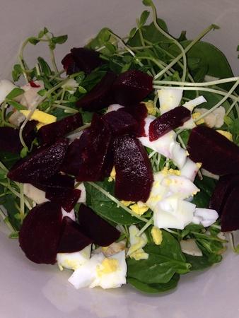 Spinach beet salad Stok Fotoğraf
