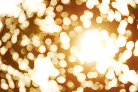 beautiful color bokeh light and sunny
