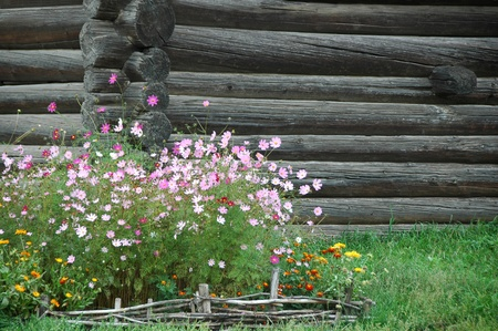 timbered wooden wall and flowerbed photo