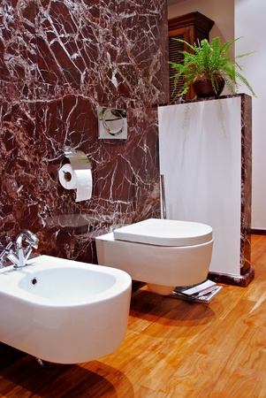 interior of a bath room with toilet sink and bidet