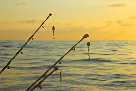 spinning rods in front of sea  photo