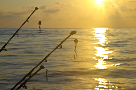 spinning rods in front of sunset sky photo