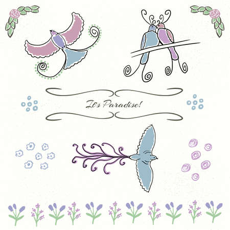 birds of paradise: Birds of paradise, flowers, borders and texture. Vector clipart for greeting cards, wedding invitation, etc