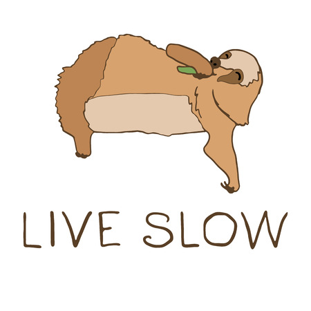 arboreal: illustration of cute eating sloth with hand lettering. Live slow text. Relaxed and happy animal