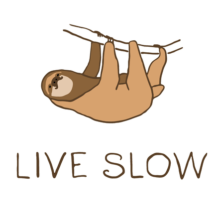 arboreal: illustration of cute hanging sloth with lettering. Live slow text. Relaxed and happy animal Illustration