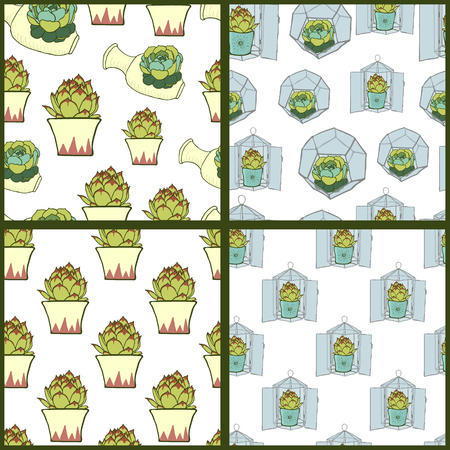 terrarium: Set of four seamless patterns with  succulents. Illustration of green cactus and geometric glass terrarium. Stainedglass terrarium with succulent. Modern style florariums and ceramic planters