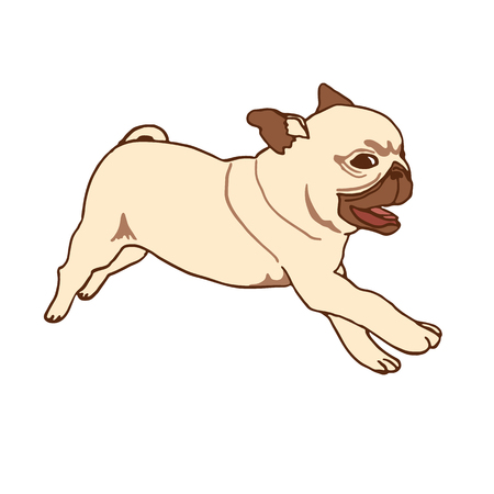 playful: Pug puppy. Hand drawn vector illustration of little cute dog isolated on white. Running playful pug puppy