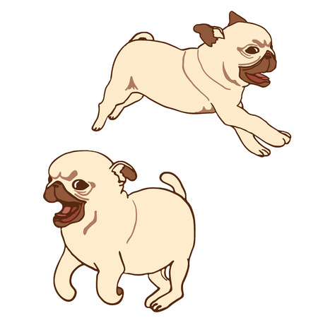 pug puppy: Set of two pug puppies. Hand drawn vector illustration of little cute dogs isolated on white. Running playful pug puppy