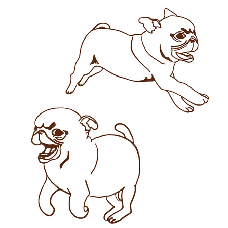 playful: Set of two pug puppies. Hand drawn vector illustration of little cute dogs isolated on white. Running playful pug puppy