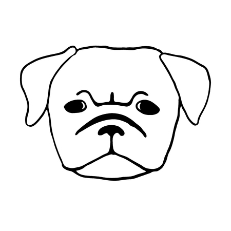 pug puppy: Pug puppy. Hand drawn vector illustration of dog head isolated on white. Cute little frowing pug