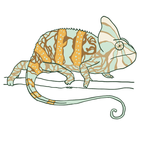 mimicry: Hand drawn chameleon. Vector illustration isolated on white