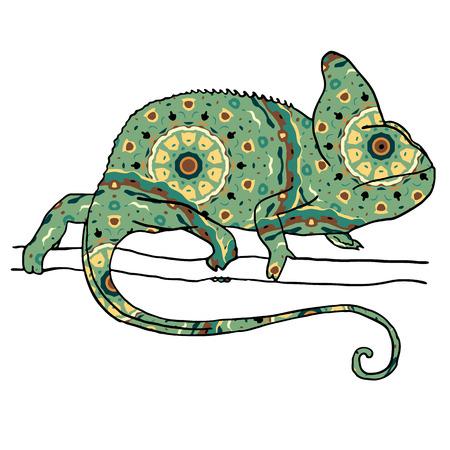 illustraton: Vector illustraton of chamaleon with hand drawn pattern. Reptile isolated on white Illustration
