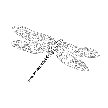 meditaion: Zentangle style vector illustration of dragonfly isolated on white. Hand drawn black and white illustration with abstract pattern. Adult coloring page for meditative relaxation