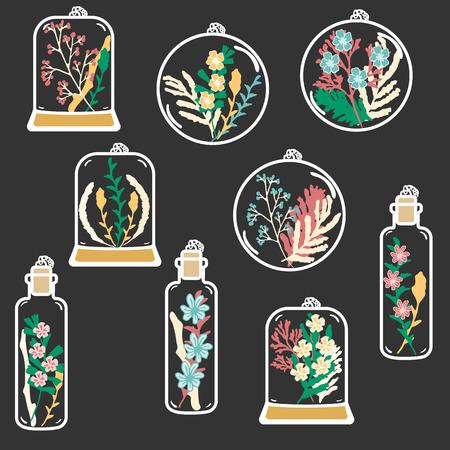 flores secas: Conjunto de terrarios florales dibujados a mano. Clip art. colgante de planta seca con musgo y flores bayas