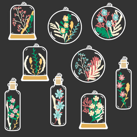 moss: Set of hand drawn floral terrariums. Vector clip art. Plant pendant with dried flowers moss and berries