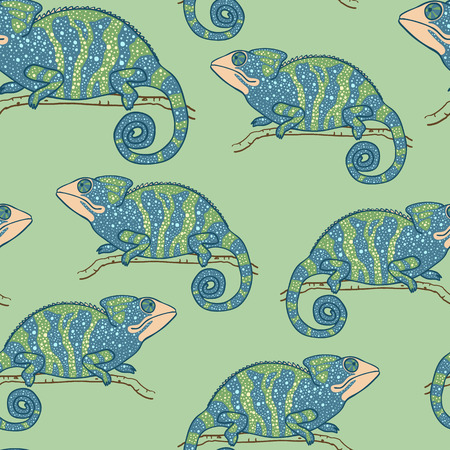 multycolored: Seamless wallpaper with chameleon on green background. Multycolored lizard. Seamless pattern with hand drawn chameleon