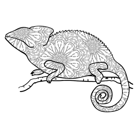 chamelion: style chameleon. Stylized animal isolated on white. chameleon with round mandala pattern. Antistress coloring page with lizard