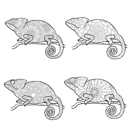 chamelion: Set of zentangle style chameleons. Zentangle style chameleon. Stylized vector animal isolated on white. Coloring page for adults. Abstract black and white freehand pattern in tribal style