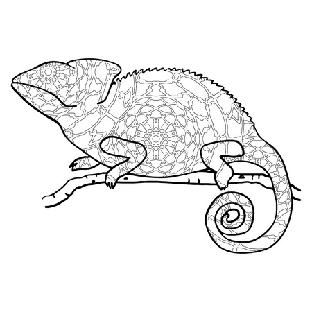 cameleon: Zentangle style chameleon. Stylized vector animal isolated on white. Freehand reptile with black and white outline pattern Illustration