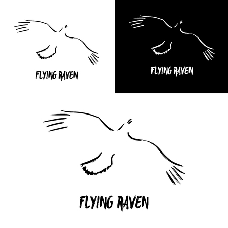 wings bird: Grunge flying raven logo template. Vector illustration isolated on white. Artistic gesture painting. Black and white crow