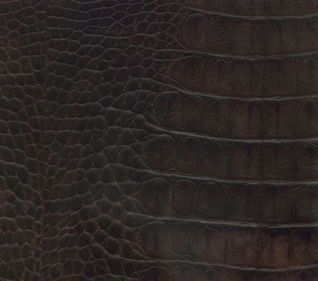nice black and brown crocodile leather texture