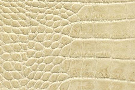beige crocodile leather texture photo