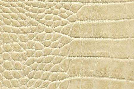 beige crocodile leather texture photo