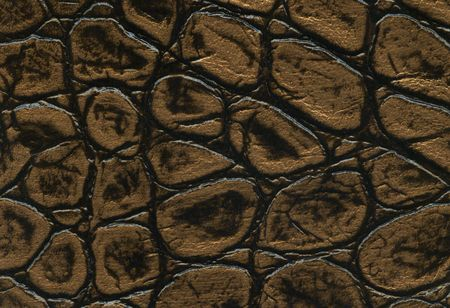 light skin: gold and black crocodile leathet texture